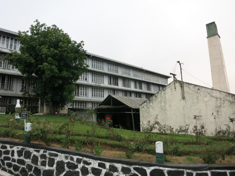 PEDRO TEA CENTER