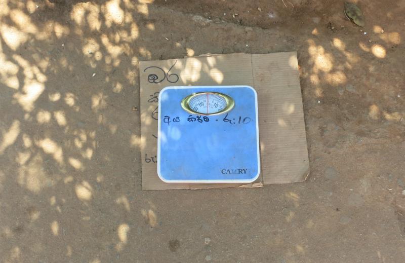 スリランカ体重計